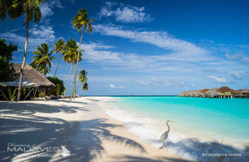 TOP 10 Best Maldives Hotels 2017 Constance Halaveli