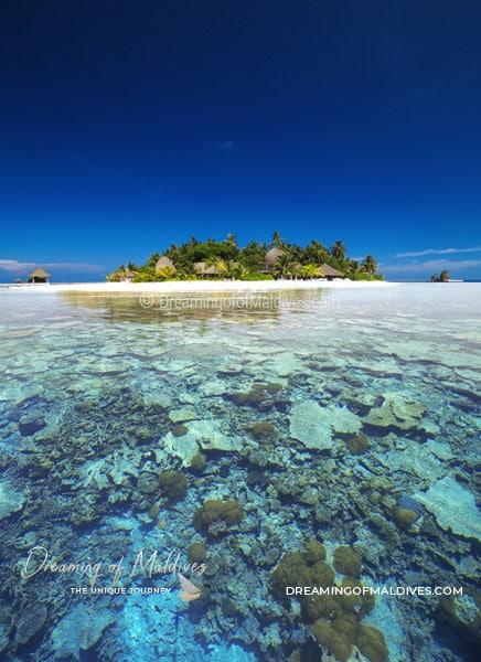 TOP 10 Hôtel de Rêve des Maldives 2018 - Kandolhu Maldives #10
