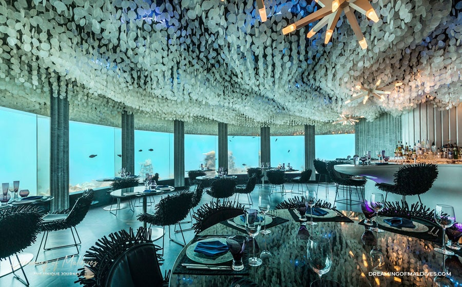 TOP 10 Hôtel de Rêve des Maldives 2018.  Niyama. Numéro 10