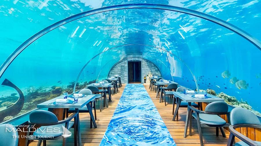 The Underwater Restaurant At Hurawalhi Maldives The 5 8