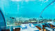 The underwater restaurant in Maldives Hurawalhi 5.8. The space inside has been designed for intimate conversations