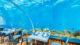 Inside 5.8 underwater restaurant maldives