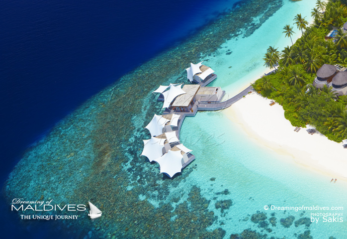 W Maldives best resort for snorkeling in Maldives. house reef