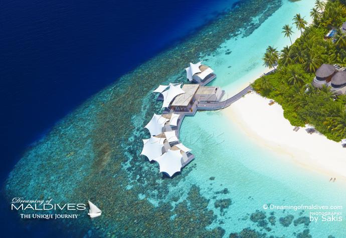 W Maldives best resort for snorkeling in Maldives. house reef