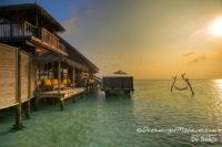 Gili Lankanfushi Maldives Sunset