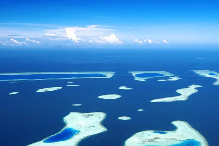 World Oceans Day 2014. Keep The Balance