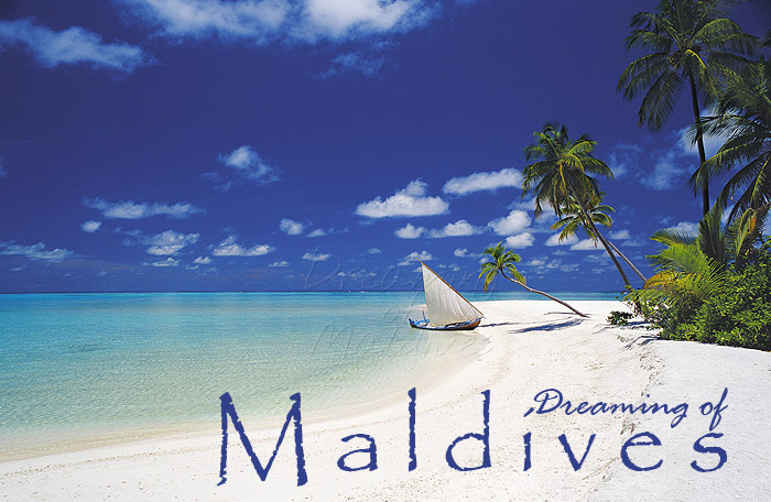 Maldives Dhoni - Inspiration of the cover of of our book First Edition, Dreaming of Maldives. Since then, a small sailing Dhoni remained as our symbol too.