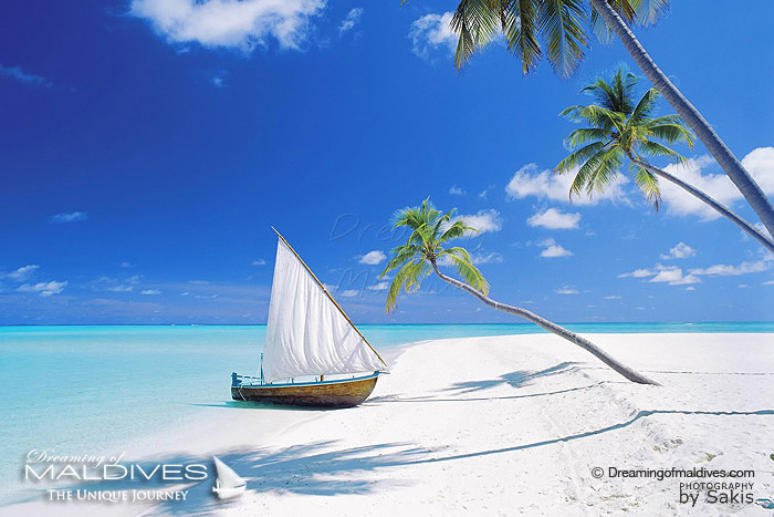 Dreaming of Maldives is inspired by a small Maldivian Dhoni