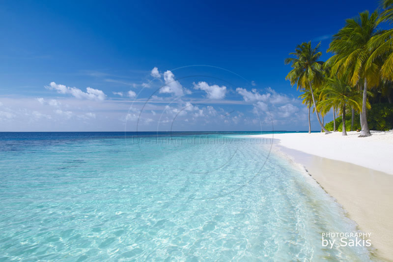 Maldives tropical beach