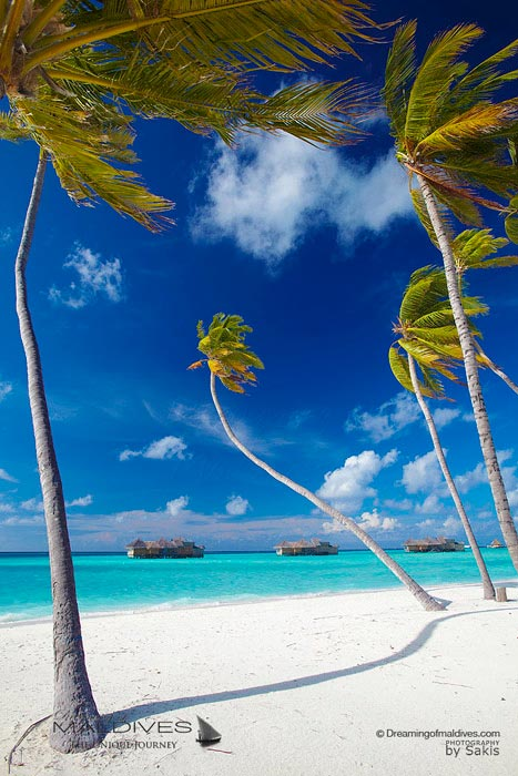 Maldives Paradise Islands - Paradise Beaches
