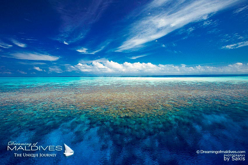 Maldives Paradise Islands - Amazing Coral Reefs