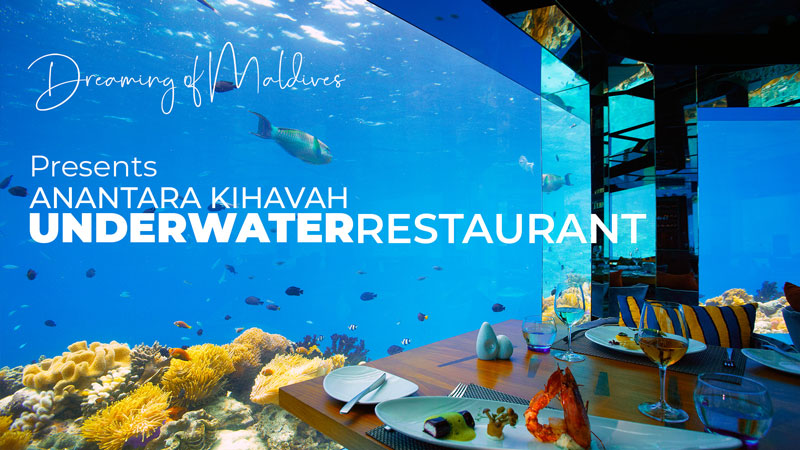 Video of the Underwater Restaurant at Anantara Kihavah Maldives