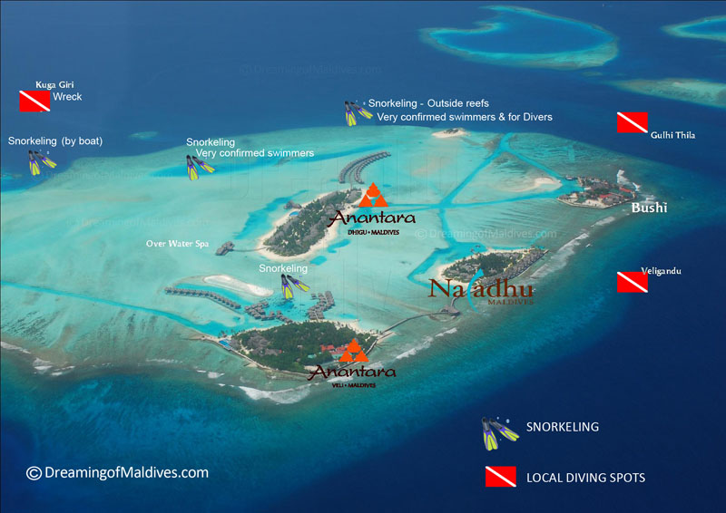 where to snorkel around Naladhu Maldives. Map of The Snorkeling Spots