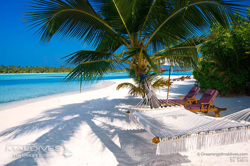 Naladhu Maldives - Hammock on the Island beach