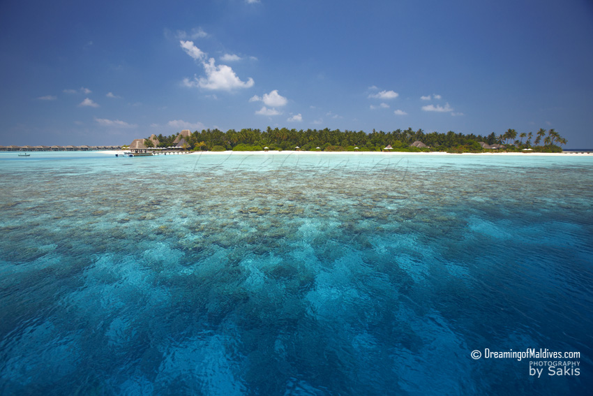 Anantara Kihavah Maldives - The Island and its beautiful House Reef