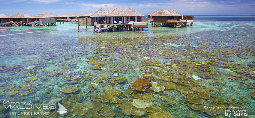 Lily Beach Maldives - water villa house reef.