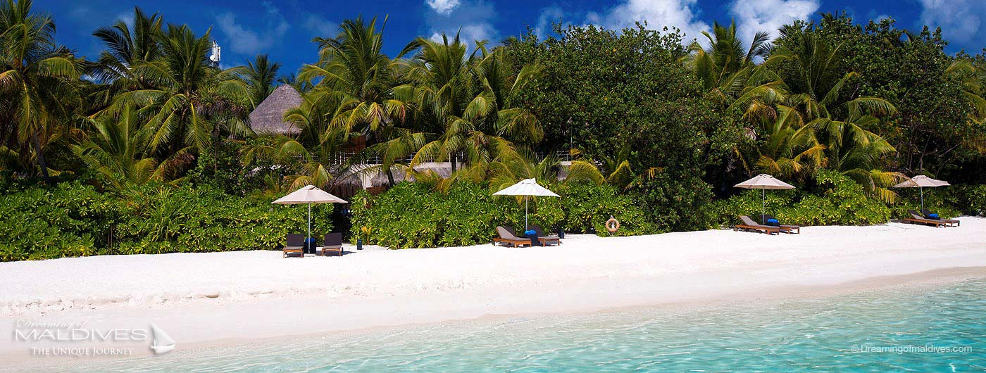 W Maldives Retreat & Spa Beach Villas Beach Oasis